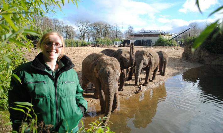 How I Got My Job as a Zookeeper