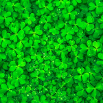 How to set your Out Of Office for Paddy's Day (in Irish, of course)